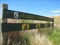 Nardoo sign