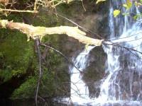 Craiglowan Falls