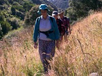 Lesley leads Frank and Arthur up Careys Creek track.