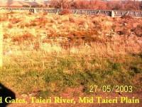 Flood Gates on Taieri Plain