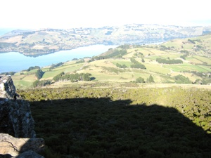 Harbour from Buttars Peak