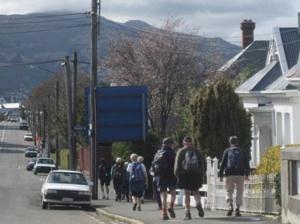 Down from Maori Hill