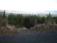 Taieri Plain