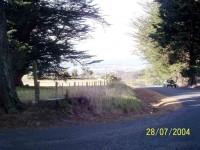 Dunedin from Mount Grand
