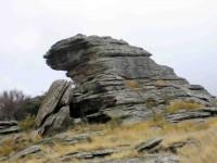 Rock on Knobby Range. (Pat pic)