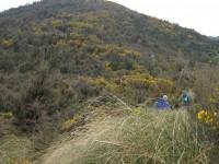 Looking back up Blue Gum Ridge