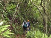 Track down Careys Creek. George, Ken.