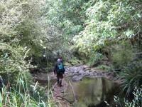 One of many stream crossings. George, Ken