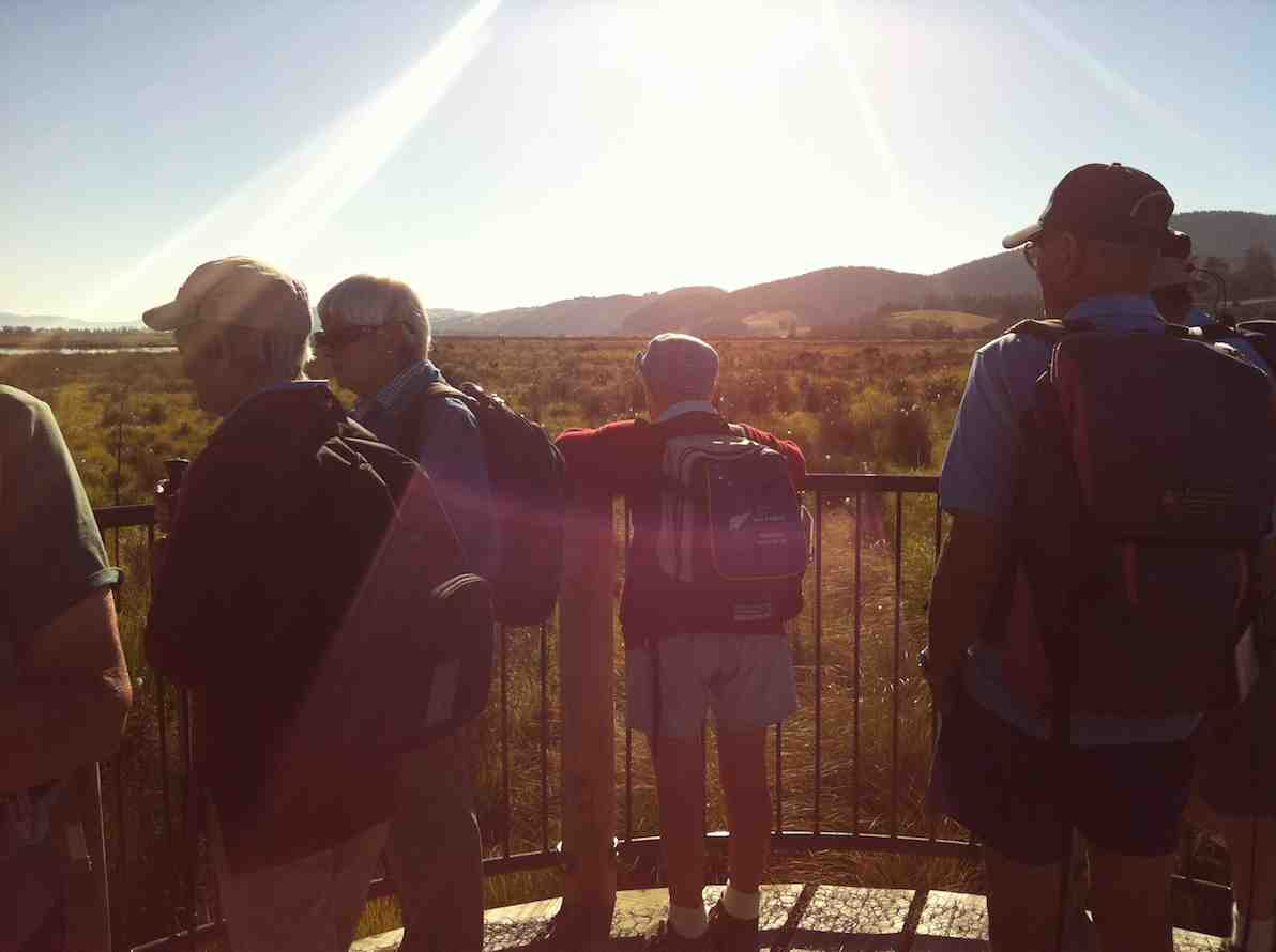 Viewing post on the Titri Wetlands
