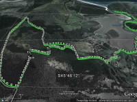 Purakanui Mopanui McKesslers Track. (Ken pic and caption)