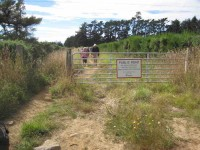Ascending Brinsdon