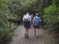 Up the Frasers Gully track.