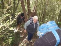 Bush track (John pic)